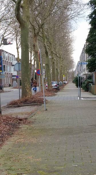Bewonersparticipatie in Zoetermeer 5