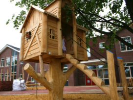 Cradle-to-cradle boomhut – Nieuw tweede leven voor eikenboom