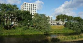 Groot- en Klein Houtrust in Den Haag