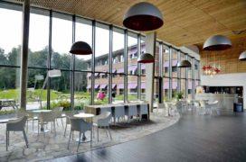 Transparante groene kamer voor verslaafden