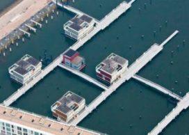 Warmte- en waterbeheer deel 4: Meer water in een groenere buurt