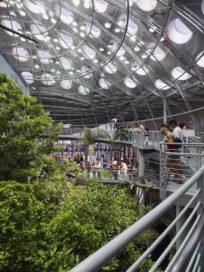 California Academy of Sciences in San Francisco door Renzo Piano Building Workshop