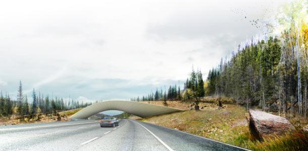 Okra Ecoduct