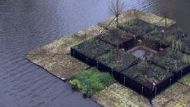 Video van de Week – Drijvend park Rotterdam
