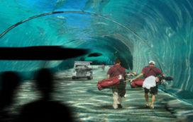 Waterstudio ontwerpt drijvend golfterrein