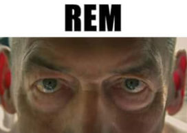REM in Venetië in première