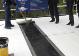 Derbigum werkt aan innovatieve plantaardige dakbedekking