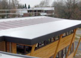 Plantaardige dakbaan