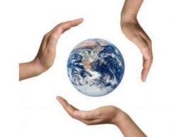 Energielabel op vrijwillige basis ingevoerd