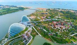 Video van de Week: Paul Baker vertelt over Gardens by the Bay in Singapore