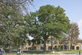 Opening brede school SOM in Coevorden