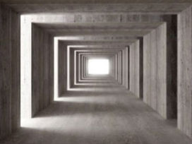 """""""Constructeur dominant bij hergebruik betonnen gebouwen"""""""