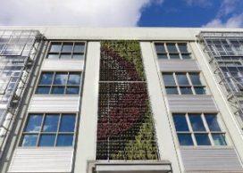Groene 'kantoâhgevel' in Den Haag