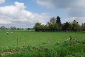 Samenwerking Wageningen en Delft bij landschapsarchitectuur