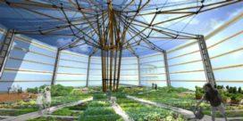 Stedelijk tuinieren in met bamboe gerenoveerde Gentse gasklokken
