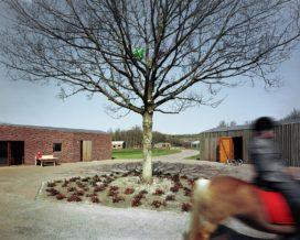 Dagbesteding in Noordwijk