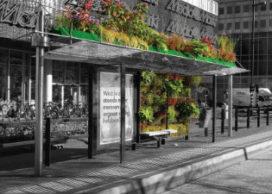 Ruimte voor groen in Eindhoven