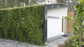 Explosieve groei van groen bouwen