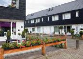 Heren 5 renoveert Zwolse bloemkoolwijk
