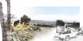 Nieuwe Tbilisi Zoo wordt recreatiegebied