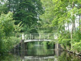 Haagse woningen meer waard door groen in de stad