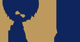 Elf nominaties NRP Gulden Feniks 2017