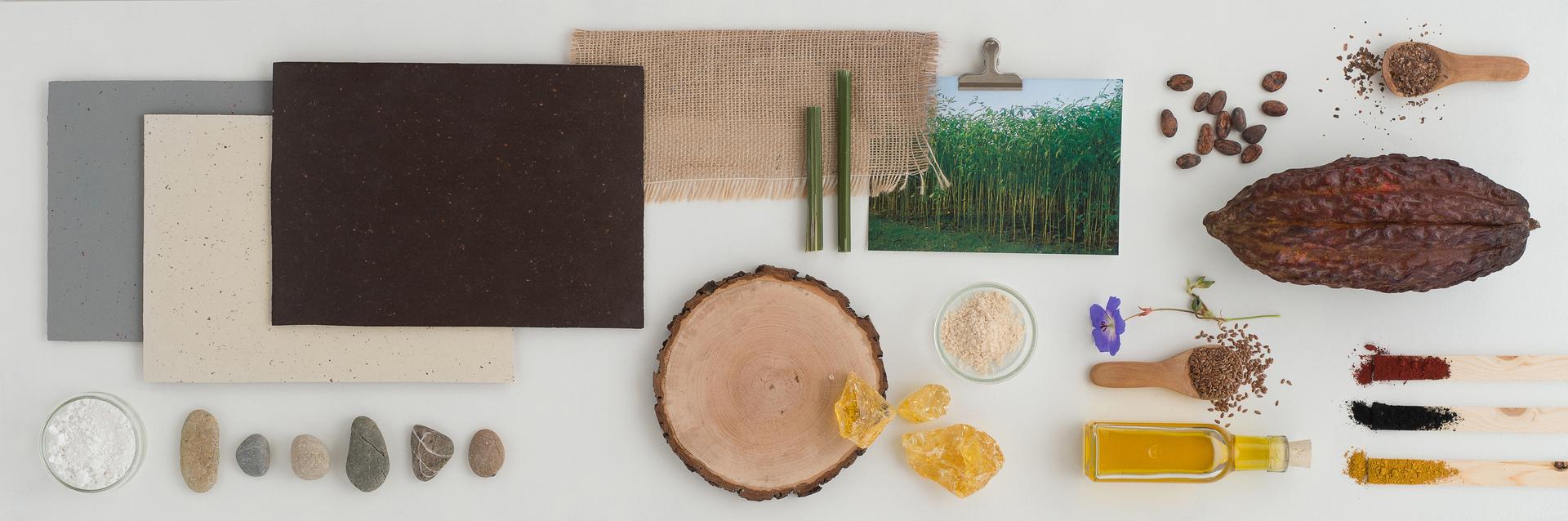 <p>Alle-natuurlijke-ingredienten-van-het-nieuwe-Marmoleum-Cocoa-van-Forbo-Flooring-op-een-rijtje</p>