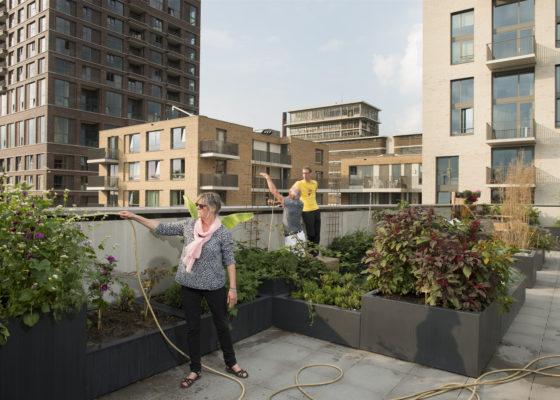 Woningbouw – Bouwen in CPO, PO en KO