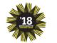 Def logo gvhj 18 80x61