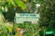 Popup park rotterdam 80x53