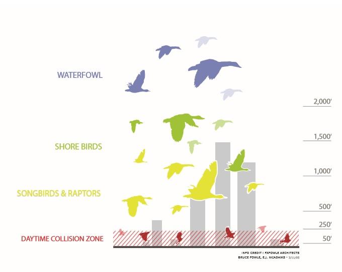 Blog Duurzaam Bouwen Ook vogels tellen mee