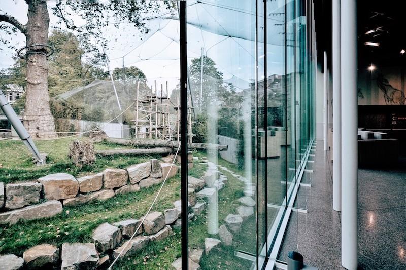 Uitbreiding Antwerpen Zoo door Studio Farris. Foto: Martino Pietropoli