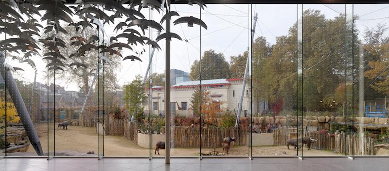 Uitbreiding Antwerpen Zoo, restaurant door Studio Farris. Foto: Toon-Grobet