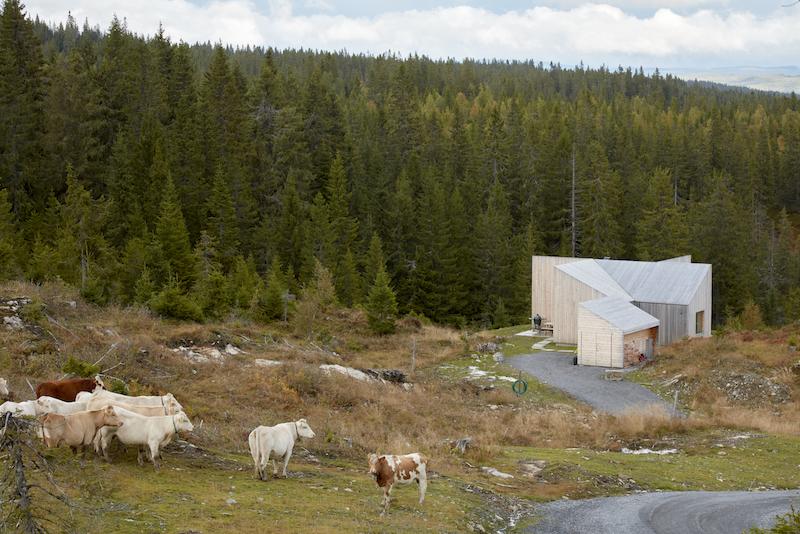 Mylla hytte, Jevnaker county door Mork-Ulnes Architects