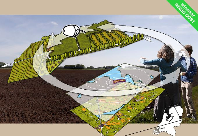 Wat een eikels in het Twentse landschap door Liane Lankreijer, Yvonne Cuijpers, Bart Achterkamp, Pauline van den Broeke, Anne-Jifke Haarsma en Anne-Jifke Haarsma