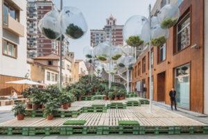 Blog – Urban Bloom