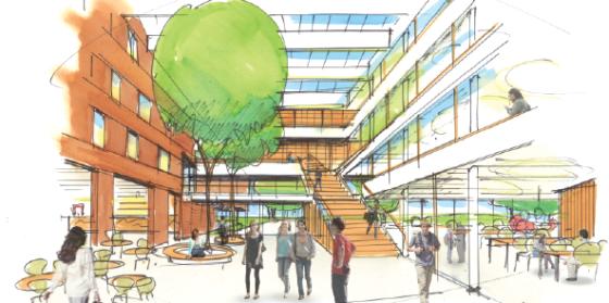 DP6 wint selectie Hogeschool Leiden