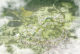01 aerial view ckcap ch ramboll studio dreiseitl de 80x54
