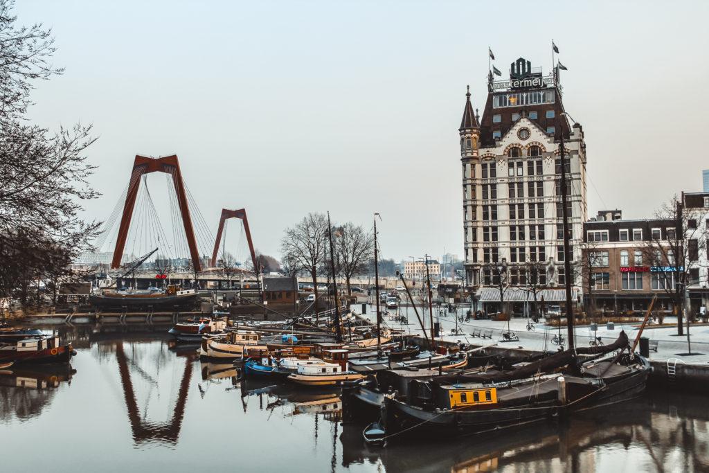 Willemsbrug Rotterdam, beeld Shutterstock