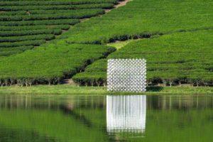 Blog – Module+ in Thanh An Tea Hills