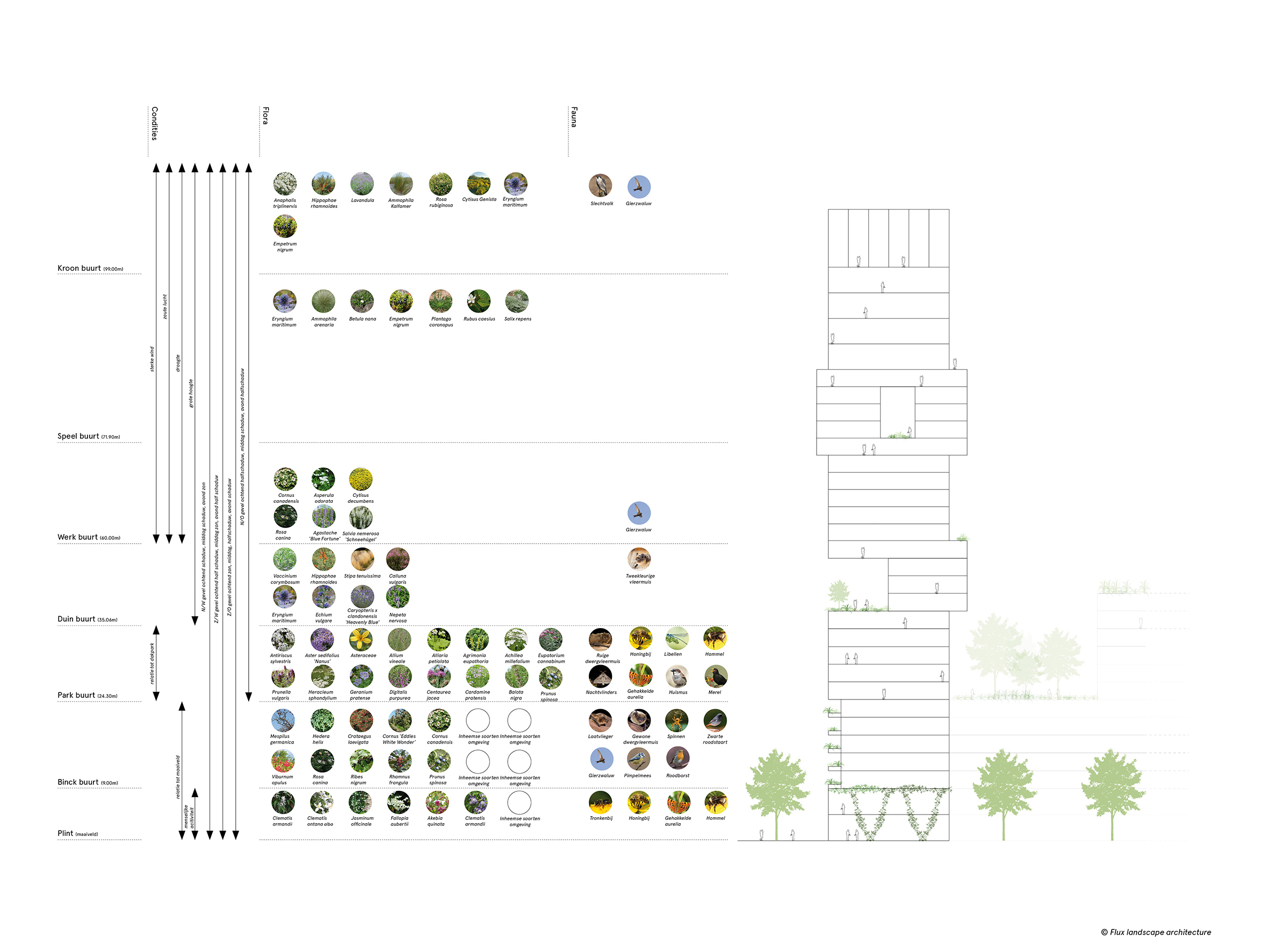 <p>Beeld: Flux Landscape architecture</p>