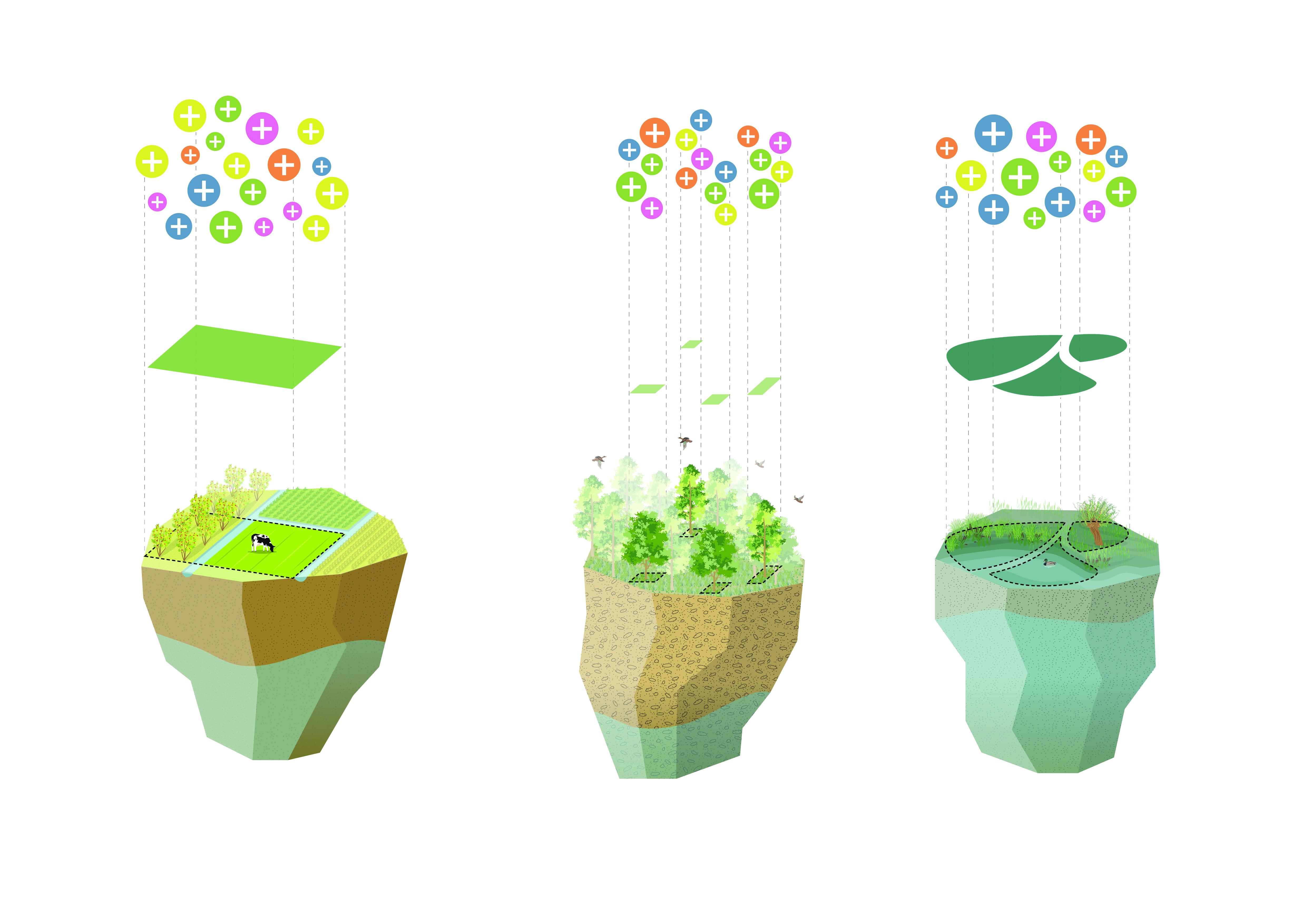 <p>Productief Landschap – Zowel de bebouwde als groene delen worden als productieve ruimten gezien, waar een mix van wonen, werken en vrije tijd mogelijk wordt gemaakt. Om al deze functies samen te voegen is het landschap opnieuw verkaveld in een variatie van percelen. Deze hebben verschillende afmetingen  en vormen in het park, stedelijk en landelijk gebied. Per perceel worden gebiedscondities op microniveau gekoppeld aan de productie van voedsel en energie, waterbeheer, afvalverwerking en het generen van biodiversiteit</p>