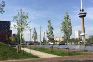 Onderzoek naar woningbouw aan Parkhaven Rotterdam