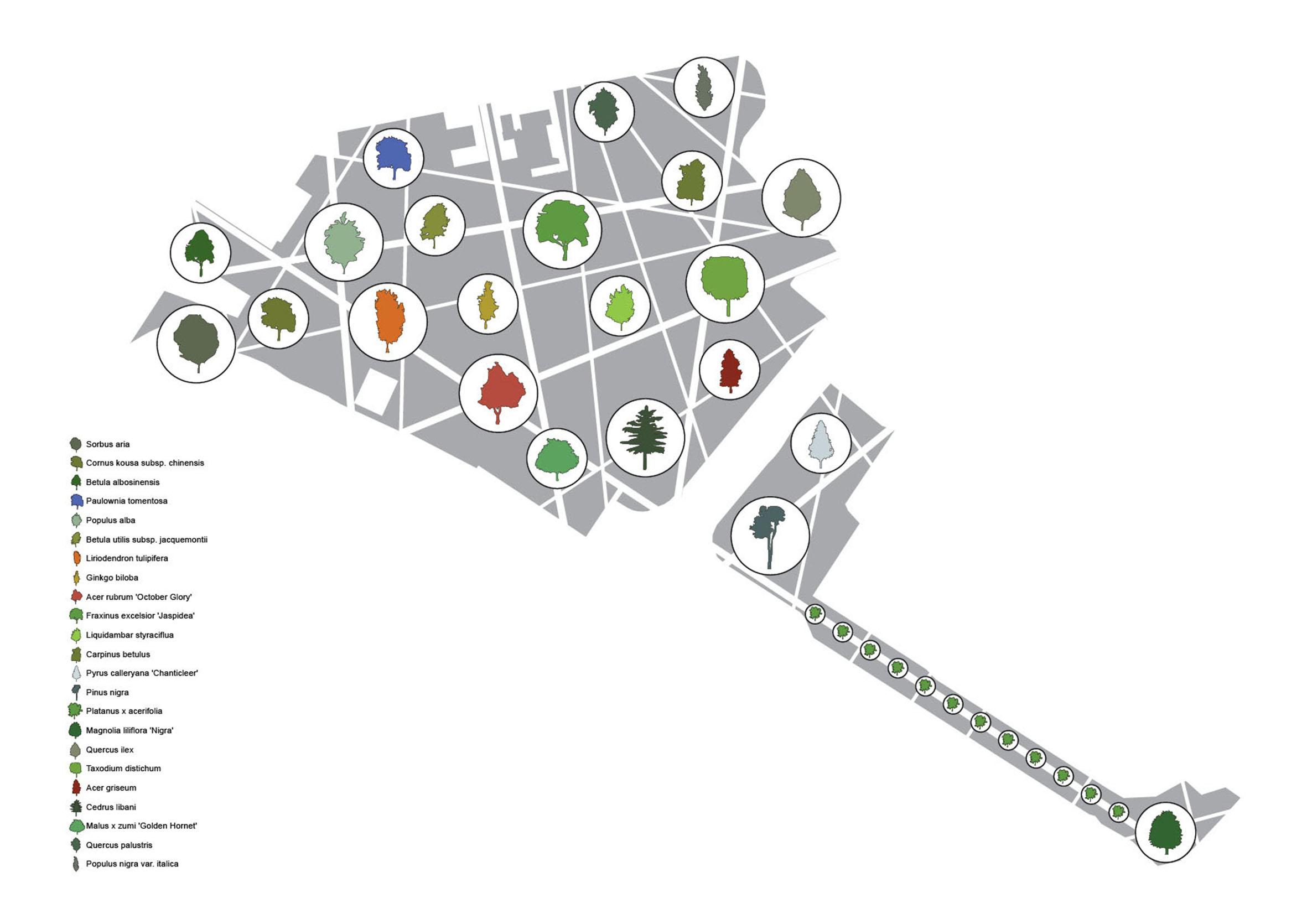 <p>In het park zijn in totaal 23 verschillende boomsoorten aangepland</p>