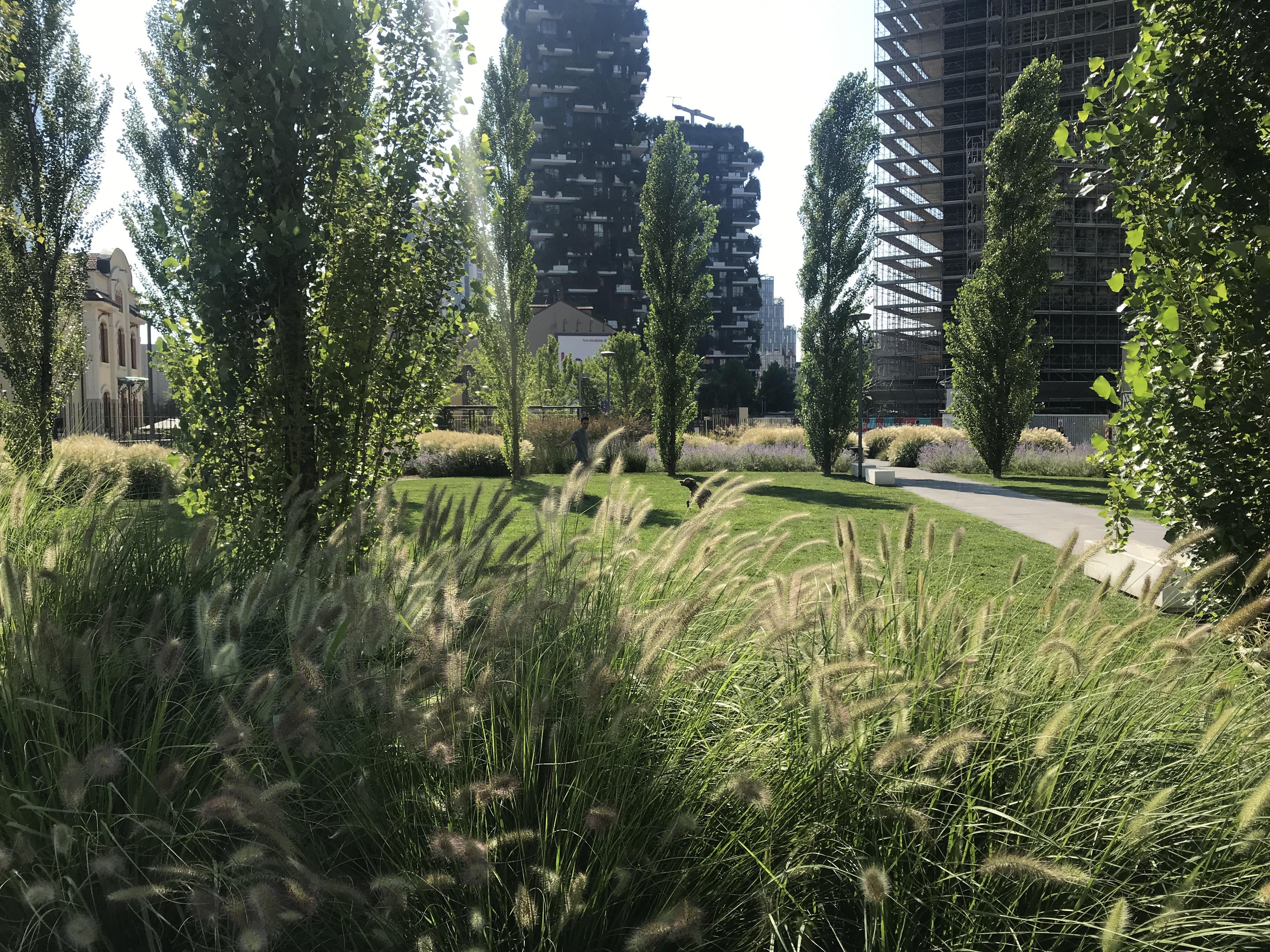 <p>Zodra planten uitkomen, krijgt het park volume. Beeld Andrea Cherchi</p>