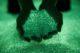 Presenceroosegaarde13 80x53