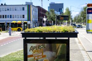 Utrechtse bushokjes groene wereldhit