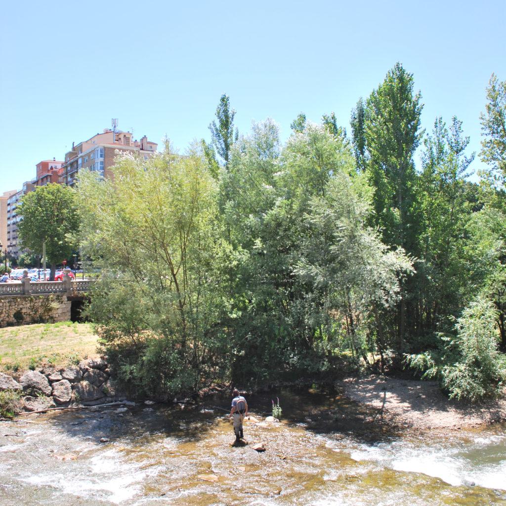 Natuur en stad komen samen in het centrum van Burgos, ES. Beeld Robbert Guis