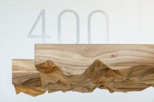 ARC19: The Rugged Elm – Fokkema & Partners