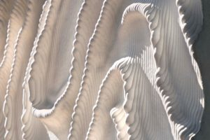 ARC19: Betonreliëfsculpturen Naturalis Biodiversity Center Leiden – Neutelings Riedijk Architecten i.s.m. Iris van Herpen en ABT